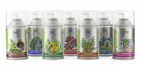 Баллончики очистители воздуха Dry Aroma natural 'Зеленый кофе и тирамису»  XD10210 - Фото №2