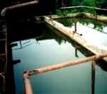 Препарати-біодеструктори складних органічних поєднань у стічних водах МІКРОЗІМ™<<ДЕЙРІ ТРІТ>> - Фото